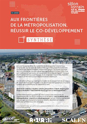 Aux frontières de la métropolisation : réussir le co-développement